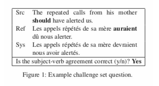 NMT 104 English French Challenge set questions
